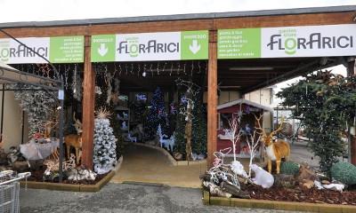 Florarici